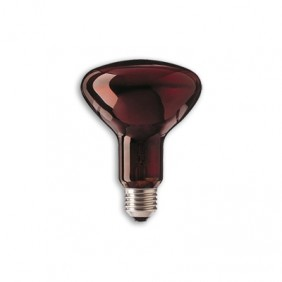 Lamp. Infrarrojos 250W E27