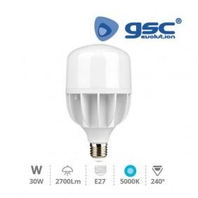 Bombilla LED E27 30w 5000K