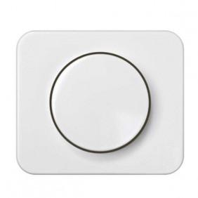 Placa + Botón Regulador