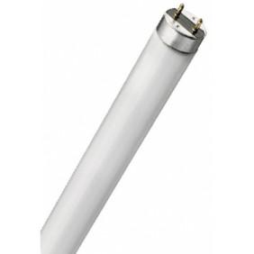 tubo fluorescente actinico luz negra ultravioleta 15w BL